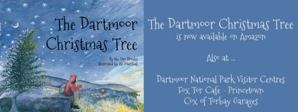 Buy the Dartmoor Christmas Tree now on Amazon.