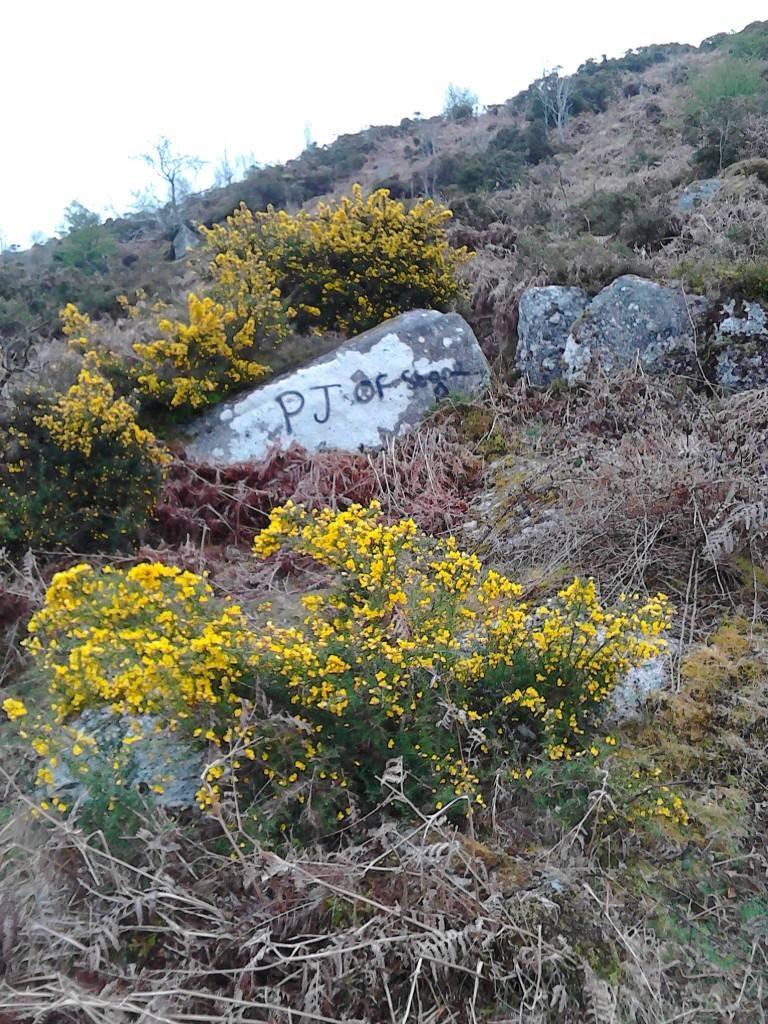 Dartmoor Graffiti