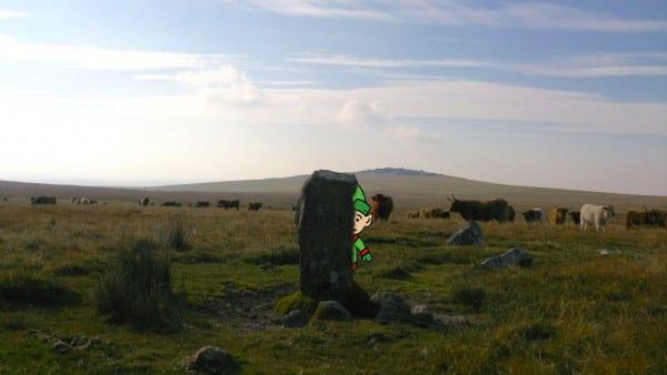 Dartmoor Elf