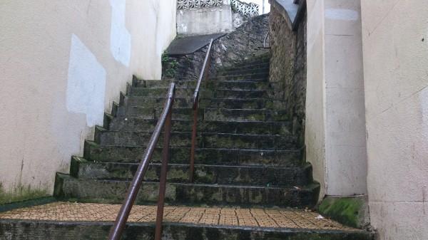 Steps T