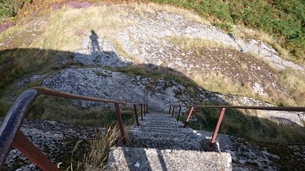 Blackingstone Ladder Top