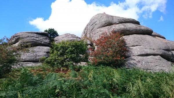 Blackingstone Rock