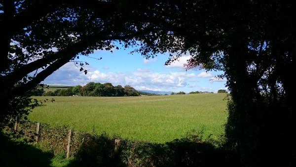 marldon-view