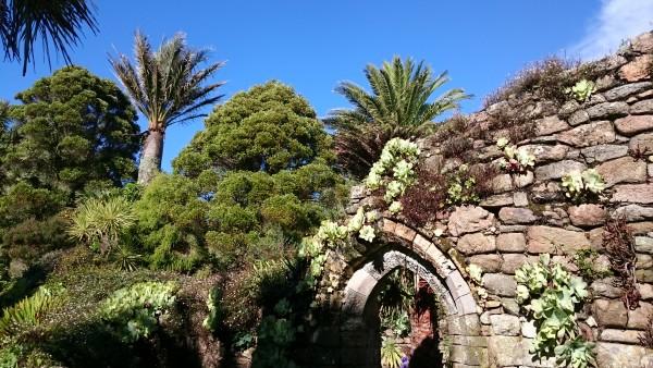 scilly-tresco-garden-1