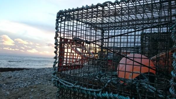 lobster-pot-lyme-regis