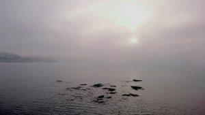 sea-mist-torbay-2