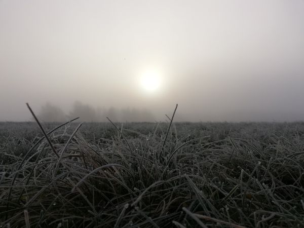 frosty morning woodhenge